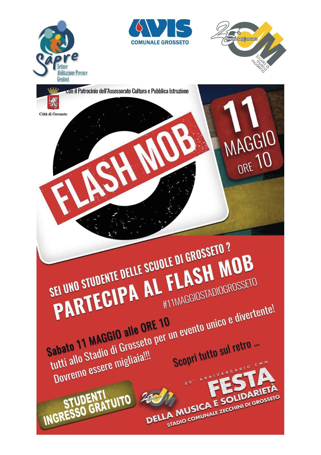 flash mob 1